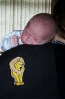 Picture of a baby and an embroidered lion burp cloth